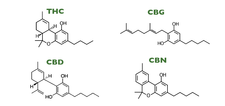 Common cannabanoids chemical composition, image from http://www.leafscience.com/2015/10/23/cannabinoids/