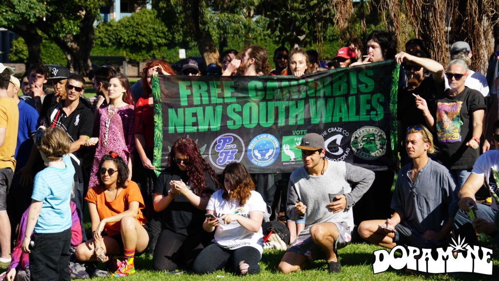 October 2016's Free Cannabis NSW picnic